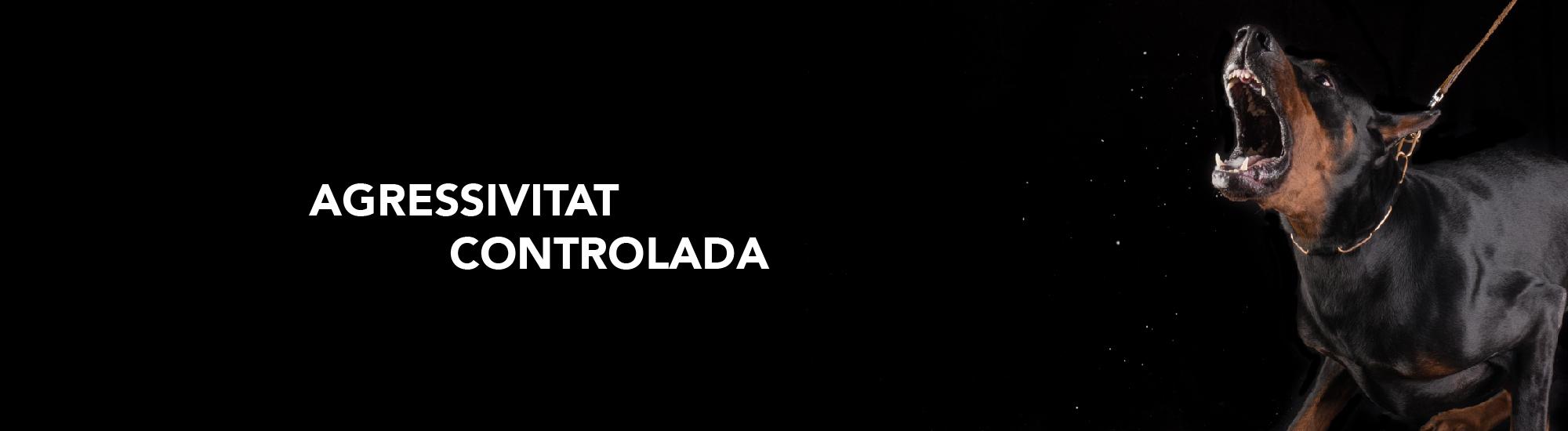 slide_catalan-01